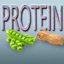 Aminosäuren & Proteine